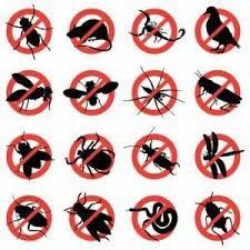 Chú ý vào những điều cần lưu ý và hướng dẫn sử dụng để bạn sử dụng các biện pháp một cách an toàn nhất